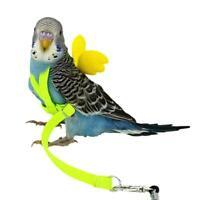 Pet Parrot Bird Harness Soft Lead Leash Flying Training Rope Cockatiel Outdoor