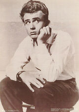 SMALL POSTER : ACTOR : JAMES DEAN - SITTING  - FREE SHIPPING !   #M015 RC31 D-R