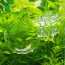 Aquarium fish Tank aquatic Crystal Glass Pot Plant Cup Holder Mini Red Shrimp