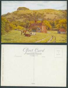A.R. Quinton Old Postcard Chanctonbury Ring near Worthing Sussex Cow Cattle 2035