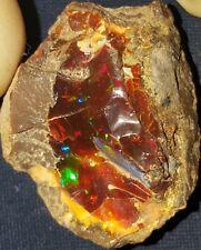 39.25 Carat Ethiopian Chocolate Shewa Rough Opal #2161009041