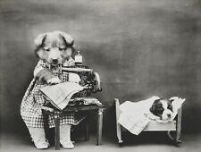 Vittoriana Steampunk Dog Puppy Completo Letto macchina per cucire abiti foto Gotico