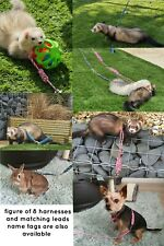 Figure Of 8 Harness and Lead for Small Animal, Ferret, Rabbit, Cat