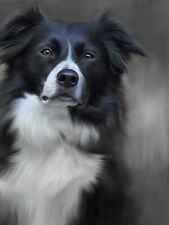 More details for nigel hemming border collie print, labrador gun dogs art canine ltd edition  #1