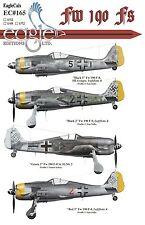 Eagle CAL 1/48 Fock-Wulf FW 190f #48165