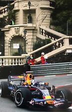 David Coulthard Firmato a Mano RED BULL RACING 18x12 foto 2.