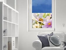 Sichtschutz Glasfolie Glasfenster farbig für Wohnzimmer Blüten Blumen