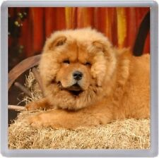 Chow Chow Coaster No 5 by Starprint