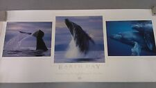"Bob Talbot 1995 ""EARTH DAY"" Signed Lithograph Print Certificate of Authenticity"