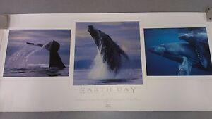 """Bob Talbot 1995 """"EARTH DAY"""" Signed Lithograph Print Certificate of Authenticity"""