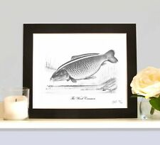 THE WOOD COMMON Limited Edition Carp Picture Fishing Fish Art Drawing Print