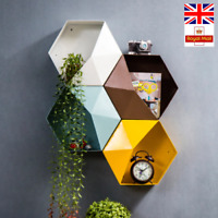 Chic Storage/ Display Shelf Plant Pot Iron Hexagon Box With Half Lid 4 Colors