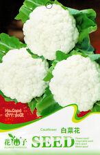 1 Pack 50 White Cauliflower Seeds Broccoli Organic C006