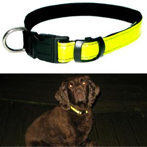 Hi Visibility Dog Collar Hi Viz Yellow Light Reflective Strip Safety Adjustable