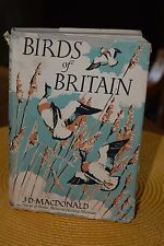 BIRDS of BRITAIN by J.D. MACDONALD 1949 G. Bell and Sons, Ltd. nature