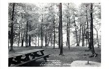 Cornell WI~Burnett Island State Park~Picnic Playground~Grill~Slide~1950s RPPC