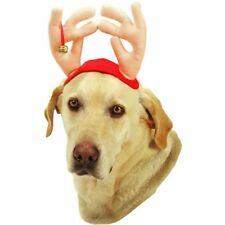 VOTOYS XMAS WHITE ANTLERS LARGE DOG CHRISTMAS HOLIDAY TO THE USA
