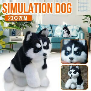 Hus ky Dog Toys Plush Toys Simulation Animal Models Children's Funny Gifts Toy