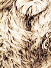 Sanguine Eagle - Individuation tape Yellow Eyes Vorde Imperial Trumpet Vanum