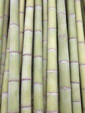 3-PACK 3 Foot DRY Bamboo CANES for CRAFTS