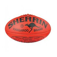 AFL PREMIERSHIP CUP CUT OUT LARGE 625MM AFL PARTY DECORATIONS