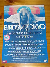 BIRDS OF TOKYO - 2010 SADDEST THING  Australia  Tour - Laminated Promo Poster