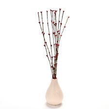 10 Pcs Pretty Pip Berry Stem for Wreath Floral Arrangement Crafts Decor L3q Red