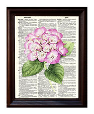 Hydrangea Watercolor - Dictionary Art Print Printed On Authentic Vintage