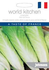 Johnsons World Kitchen Vegetable - Chicory Pain de Sucre - 1000 Seeds