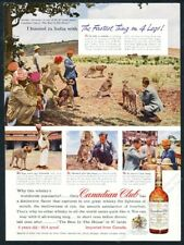 1957 India cheetah hunting pack photo Canadian Club Whisky vintage print ad