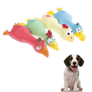 Pet Dog Puppy Cat Chews Toy Natural Latex Chicken Squeaky Sound Play Toys DB