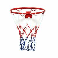 32cm Wall Mounted Basketball Hoop And Netting Metal Hanging w/ Goal 4 Rim.