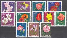 Polen / Polska 1541-1552** Gartenblumen