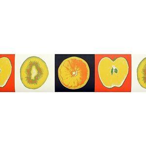 Modern Art, Fruit Wallpaper Border MA52750B (15.3cm x 5m Approx)
