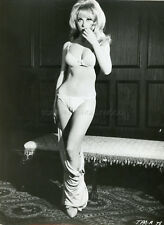 SEXY ANGELIQUE PETTYJOHN  60s  VINTAGE PHOTO ORIGINAL