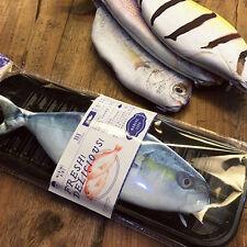 1 Pc Fish Shape Pencil Case Makeup  Bag Pencils Pen Box Purse Office Supplies