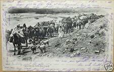 ALGERIE - CARAVANE DU CAÏD BEN GANAB - 1903