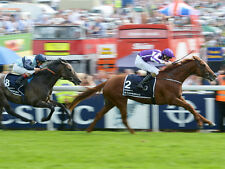 Horse Racing - 30 Betting Systems that win - Good Value