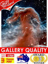 NEW Horsehead Nebula 2, NASA Space, Hubble Telescope, Giclee Art Print or Canvas