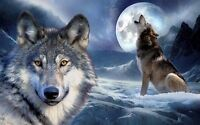 Wolf - Wild Nature Animals Art Deco Poster Wall Fabric Canvas 3014