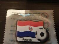 Länder Magnet Pin fürs Auto  Kühlschrank PARAGUAY