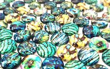 20 ABALONE CABOCHONS-OYSTER SHELL 12MM-GLASS/FLATBACK/CRAFT/IRIDESCENT-GLASS