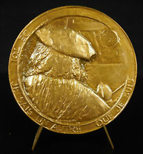 Medal Johannes Vermeer Painter Baroque Dutch Le Sphinx of Delft Medal