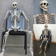 Halloween Skeleton Human Skeleton Decoration Prop Hanging Ornament Supply