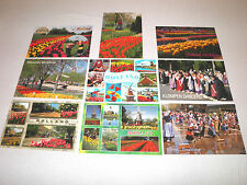 Lot of 9 Postcards of The Town of Holland Michigan, Flower Tulips etc - Postcard