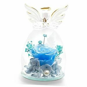 Preserved Real Rose in Glass Dome Eternal Rose with Angel Figurines for Blue