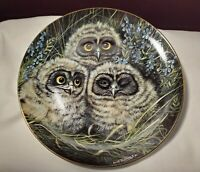 "Danbury Mint 1988 Dick Twinney Baby Owls Collection SHORT EARED OWLS 8"" plate 38"