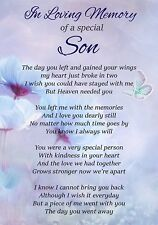 In Loving Memory Special Son Memorial Graveside Poem Card & Ground Stake F311