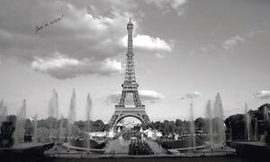 EIFFEL TOWER PREPASTED WALLPAPER MURAL Paris Wall Decor 10.5' x 6' NEW