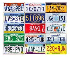 SET OF 15 GRAPHIC USA LICENSE PLATES - UNITED STATES TAG LOT SET (15C)